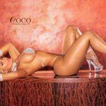 coco_01