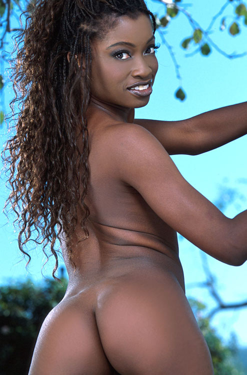 Porn star monique black name