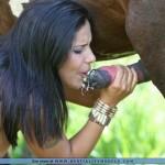 Monica Mattos bestiality 22